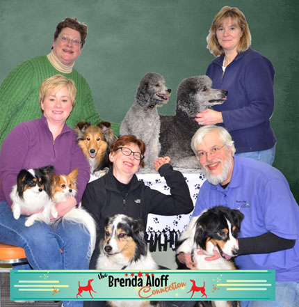 Dog Trainers at Heaven on Arf Training Facility