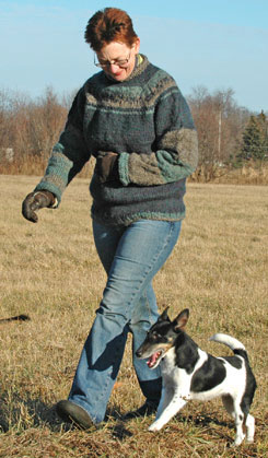 Four Skills to Develop as a Dog Trainer