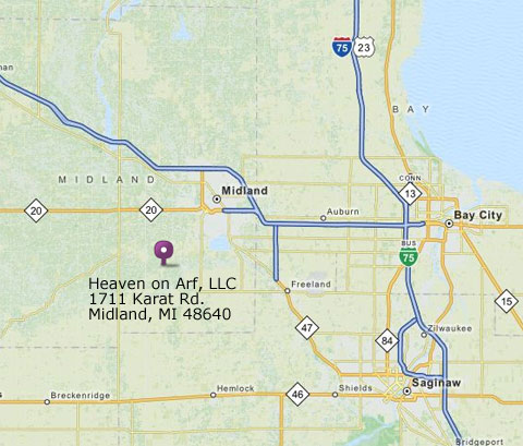 Map to Heaven on Arf, LLC
